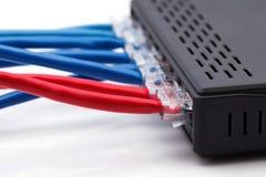LAN-nätverks- och Ethernetkablar Royaltyfri Bild