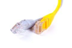 LAN-nätverkskablar Arkivfoto