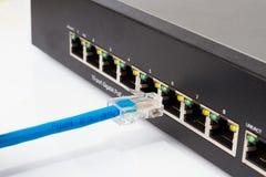 LAN-nätverksströmbrytare med Ethernetkablar som in pluggar Royaltyfri Fotografi