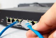 LAN-nätverksströmbrytare med Ethernetkablar som in pluggar Royaltyfri Foto