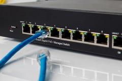 LAN-nätverksströmbrytare med Ethernetkablar som in pluggar Royaltyfria Bilder