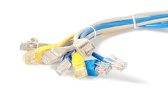 LAN Network cable with RJ-45 connector. Network cables Group with an RJ-45 connector used for the creation of local networks and hook up to the Internet via TCP Stock Photos