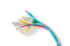 LAN Network cable with RJ-45 connector. Network cables Group with an RJ-45 connector used for the creation of local networks and hook up to the Internet via TCP Royalty Free Stock Image