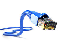 LAN network connection Ethernet RJ45 cable. Royalty Free Stock Photo