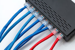 LAN network and ethernet cables Royalty Free Stock Image