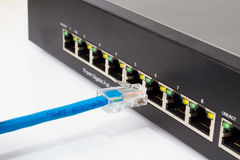 LAN network switch with ethernet cables plugging in Royalty Free Stock Photography