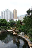 Lan Nian ogródy, Hong Kong Fotografia Royalty Free