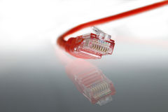 LAN Red Cat 5 Wire cable Stock Photo