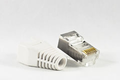 LAN RJ45 connector. Ethernet connector Royalty Free Stock Image