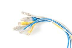 LAN sieci kabel z RJ-45 włącznikiem Zdjęcia Royalty Free