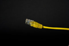 LAN sieci kabel z RJ-45 włącznikiem Zdjęcie Stock