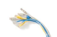 LAN sieci kabel z RJ-45 włącznikiem Obraz Royalty Free