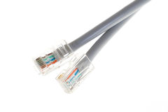 Lan telecommunication cable RJ45 on white background Royalty Free Stock Image