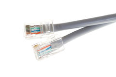 Lan telecommunication cable RJ45 on white background Royalty Free Stock Photos