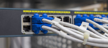 Lan utp cable plug in network switch Stock Photo