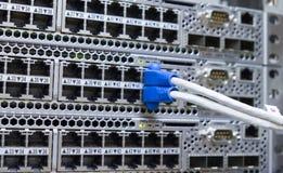 LAN-utpkabel pluggar in nätverksströmbrytaren Royaltyfria Foton