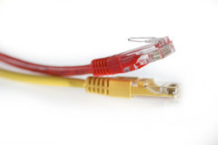 LAN Yellow and red Cat 5 Wire cable Stock Photography