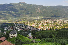 Lana (Bolzano). Panoramic view of Lana (Bolzano, Trentino Alto Adige, Italy) at summer Stock Images