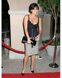 Lana Parrilla,RITZ CARLTON Stock Photo