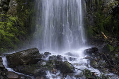 Lancasder Falls. Lancaster Falls located along the Columbia River Gorge Royalty Free Stock Photo