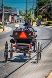 Lancaster County Amische, das offenen Buggy verwendet stockbild