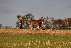 Lancaster County PA: Amish bonde med hästar Royaltyfri Foto