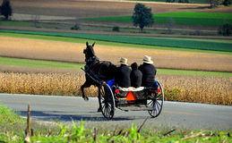 Lancaster County, PA: Amish Family Riding in Buggy Royalty Free Stock Photography