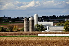 Lancaster County, PA: Amish Farm and Fields Royalty Free Stock Photo