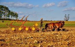 Lancaster County, PA: Amish Farmer Tilling Field Royalty Free Stock Photography