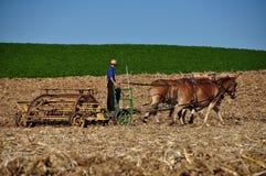 Lancaster County, PA: Amish Farmer Tilling Field Stock Image