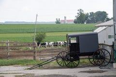 LANCASTER, EUA - 25 de junho de 2016 - povos de Amish em Pensilvânia fotos de stock