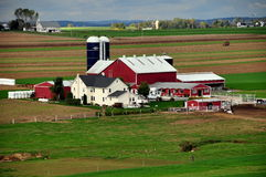 Lancaster, PA: Amish Farm Stock Image