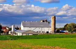Lancaster, PA: Azienda agricola di Amish fotografia stock libera da diritti
