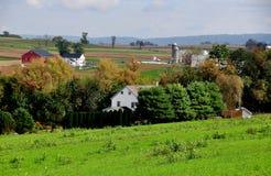 Lancaster, PA: Explorações agrícolas de Amish imagem de stock royalty free