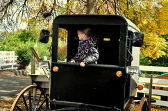 Lancaster, PA: Little Girl in Amish Buggy Royalty Free Stock Photos