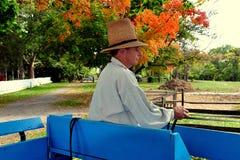 Lancaster, PA: Motorista do vagão no museu de Landis Imagens de Stock Royalty Free