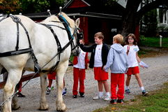 Lancaster, PA: School Children Petting Horse. Lancaster, Pennsylvania: School children in their red uniforms patting a team of white horses at the Landis Valley stock photography