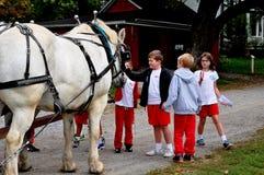 Lancaster, PA: School Children Petting Horse Stock Photography