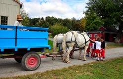 Lancaster, PA: School Children Petting Horse Royalty Free Stock Photo