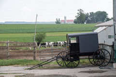 LANCASTER, USA - JUNE 25 2016 - Amish people in Pennsylvania Stock Photos