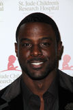 Lance Gross Stock Photography