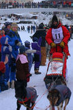 Lance Mackey Begins the Yukon Quest. Lance Mackey, a veteran musher who won the Yukon Quest 4 times in a row, begins the gruelling 1000 mile race again. Mackey Royalty Free Stock Photography