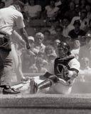 Lance Parrish Detroit Tigers arkivfoto