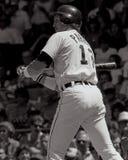 Lance Parrish, Detroit Tigers Foto de Stock Royalty Free