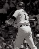 Lance Parrish Detroit Tigers royaltyfri foto