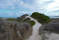 Lancelin Beach photos libres de droits