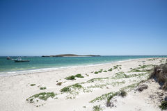 Lancelin strandsikt Royaltyfri Fotografi