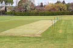 Lancement fauché de cricket Images stock