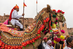 Lancer on a Camel Royalty Free Stock Photo