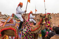 Lancers on Camels Royalty Free Stock Photography